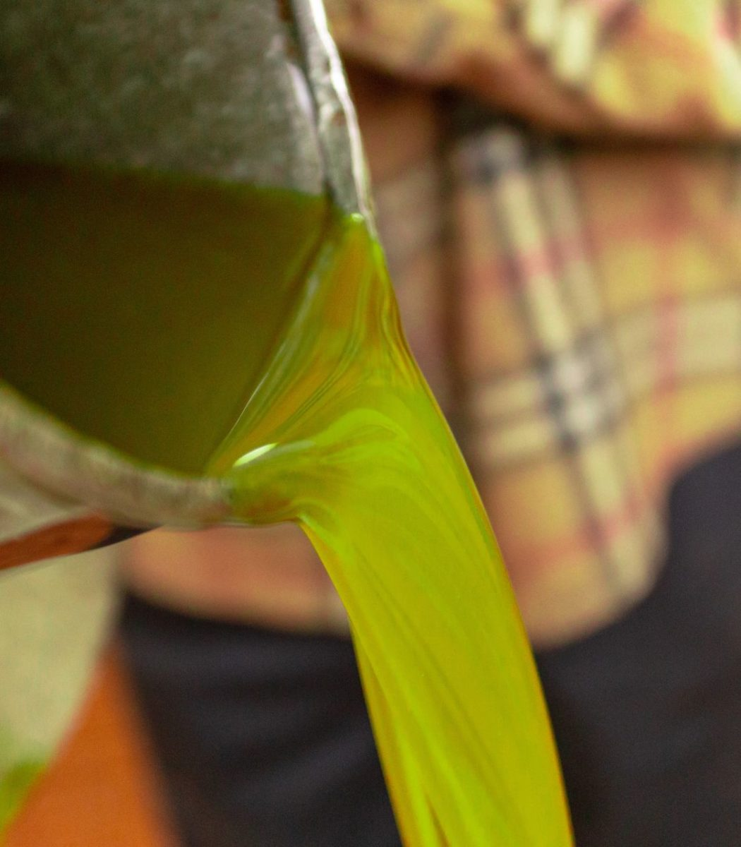 manfanetti-olio-extra-vergine-toscano-biologico-62